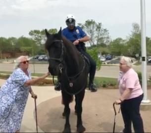 Police apprec horse