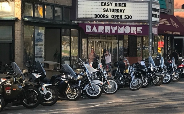 Barrymore Easy Rider