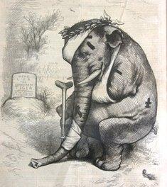 Battered elephant