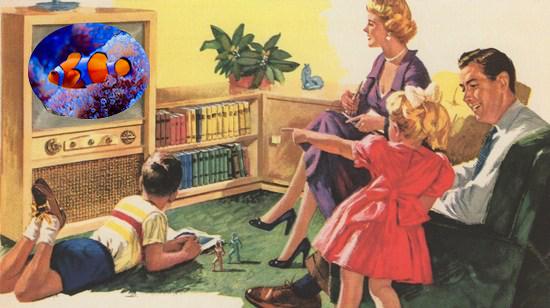 WATCHING TV FISH