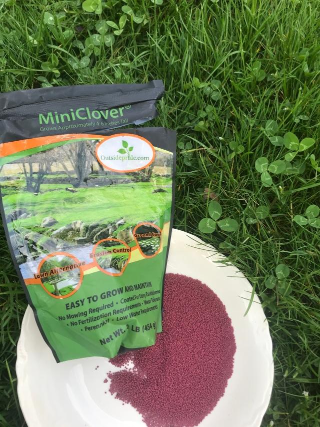 MiniClover 05-2020